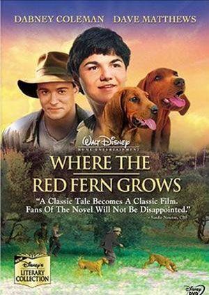 红色羊齿草的故乡
