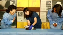 彭丽媛和米歇尔共同参观美国国家动物园大熊猫馆